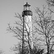 Cape May Light B/w Print by Jennifer Lyon