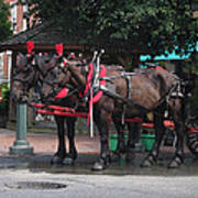 Carriage Horses At City Market Print by Linda Ryan