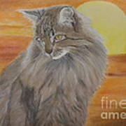 Cat And Sunset  Print by Cybele Chaves