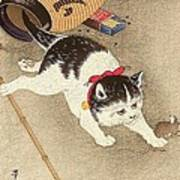 Cat Print by Pg Reproductions