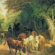 Cattle Watering In A Wooded Landscape Print by Friedrich Johann Voltz