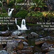 Change A Life Print by Ronald Suffron