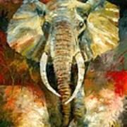 Charging African Elephant Print by Christiaan Bekker