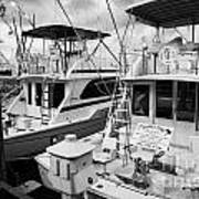 Charter Fishing Boats In The Old Seaport Of Key West Florida Usa Print by Joe Fox