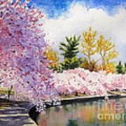 Cherry Blossoms Print by Shirley Braithwaite Hunt