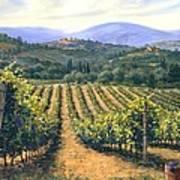Chianti Vines Print by Michael Swanson