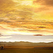Chicken Farm Sunset 2 Print by James BO  Insogna