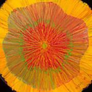 Color Burst 4 Print by Anna Skaradzinska