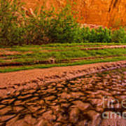 Colorful Streambed - Coyote Gulch - Utah Print by Gary Whitton
