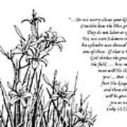 Consider How The Lilies Grow Print by Janet King