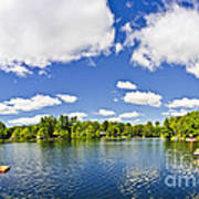 Cottage Lake With Diving Platform And Dock Print by Elena Elisseeva