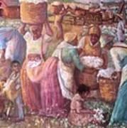 Cotton Fields Print by Pamela Mccabe