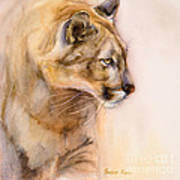 Cougar On The Prowl Print by Bonnie Rinier