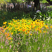 Countryside Cottage Garden 5d24560 Print by Wingsdomain Art and Photography
