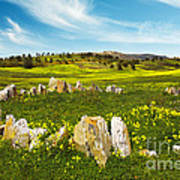 Countryside With Stones Print by Carlos Caetano