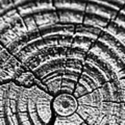 Cracks In Time Print by Christi Kraft