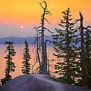 Crater Lake Trees Print by Inge Johnsson