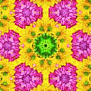 Crazy Daises - Spring Flowers - Bouquet - Gerber Daisy Wanna Be - Kaleidoscope 1 Print by Andee Design