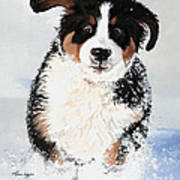 Crazy For Snow Print by Liane Weyers