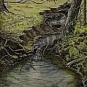 Creek  Print by Janet Felts
