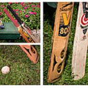 Cricket Series Print by Tom Gari Gallery-Three-Photography