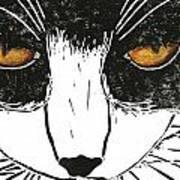 Cross Kitty Print by Kerrie  Hubbard