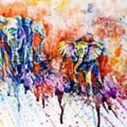 Curious Baby Elephant Print by Zaira Dzhaubaeva