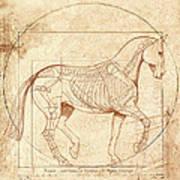 da Vinci Horse in Piaffe Print by Catherine Twomey