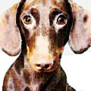 Dachshund Art - Roxie Doxie Print by Sharon Cummings
