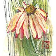 Daisy Girl Print by Sherry Harradence