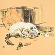 Disappointment At Not Finding The Chocolates Print by Cecil Charles Windsor Aldin