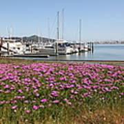 Docks At Sausalito California 5d22695 Print by Wingsdomain Art and Photography