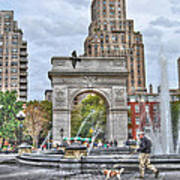 Dog Walking At Washington Square Park Print by Randy Aveille