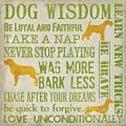 Dog Wisdom Print by Debbie DeWitt