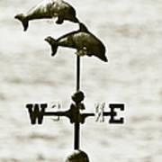 Dolphins Weathervane In Sepia Print by Ben and Raisa Gertsberg