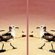 Double Gulls Collage Print by Susanne Van Hulst