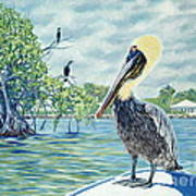 Down In The Keys Print by Danielle  Perry