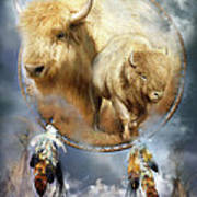 Dream Catcher - Spirit Of The White Buffalo Print by Carol Cavalaris