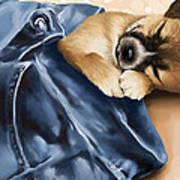 Dreaming Print by Veronica Minozzi