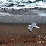 Dreamy Serene Ocean Waves Coastal Scene Print by Kathy Fornal