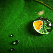 Droplet Of Love Print by Suradej Chuephanich
