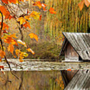 Duck's House Print by Evgeni Dinev