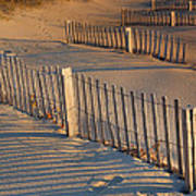 Dune Fences Early Morning Print by Steven Ainsworth