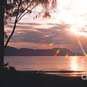 Dunk Island Australia Print by Jerome Stumphauzer