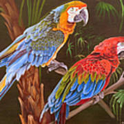 Dynamic Duo Print by Phyllis Beiser