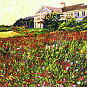 Early Evening At Cape Cod Print by David Lloyd Glover