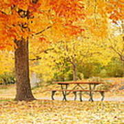 Empty Park On A Fall Day Print by Yoshiko Wootten