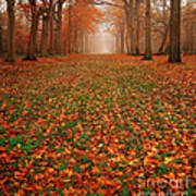 Endless Autumn Print by Photodream Art