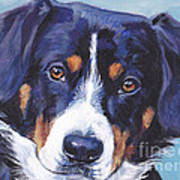 Entlebucher Mountain Dog Print by Lee Ann Shepard