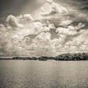 Everglades Lake 6919 Bw Print by Rudy Umans